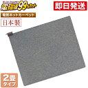 ホットカーペット 2畳 本体 電磁波カット 176×176cm 【 日本製 ZCB-20KR ZENKEN ゼンケン 電気ホットカーペット 2畳…