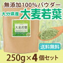 大麦若葉 無添加100%パウダー250g×4個 青汁 大麦若葉粉末 粉末 お茶 粉末茶 無添加【10P05Nov16】