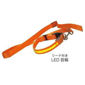 LED首輪+リードセット  z1816