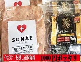 1000円ポッキリ 送料無料 お試し非常食セット