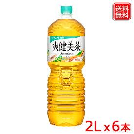 爽健美茶 植物の恵みで作ったブレンド茶 PET 2L x6本 1ケース 全国送料無料 【メーカー直送】