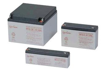 NPH16-12T: GS YUASA battery domestic regular article