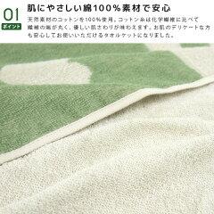 タオルケット/シングル/綿100%/ジブリ/となりのトトロ/コットンタオルケット/肌掛け