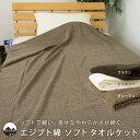 エジプト綿100% ソフト タオルケット シングル 140×200cm コットン 綿100% ワッフル調 ふっくら 毛羽立ちにくい へ…