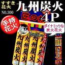【手持ち花火】九州炭火花火4P NO.300
