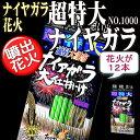 ■驚愕の全幅7m!【国産単品花火】超特大 ナイヤガラ大仕掛けNO.1000