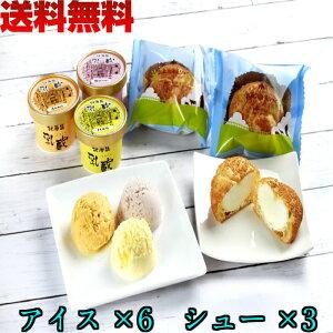 北海道  江戸屋 乳蔵 アイス & シュー クリーム セット 送料無料 スイーツ 計9個 入り 北海道産 バニラ 苺 メロン 使用