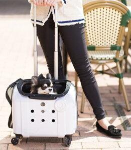 Rui&Aguri ペットキャリーケース ハードタイプ ホワイト 幅40×奥行25×高さ33cm ショルダーストラップ付(PK-029) 【ペット用品】 ルイ&アグリ 白 お出かけ 旅行ハウス 車内ケージ 犬イヌ猫ネコ用