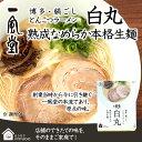 【おうちでIPPUDO】一風堂 白丸 1食 あっさりとんこつラーメン『豚骨 福岡博多 高菜 香油』