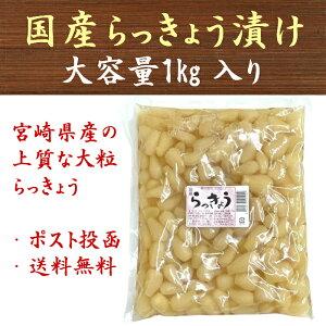 【送料無料】国産 らっきょう 甘酢漬 1kg 漬物 大容量 業務用