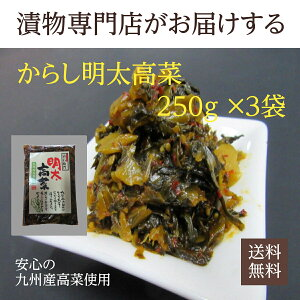 【送料無料】九州産高菜使用 辛子明太高菜 250g×3袋 からし明太高菜 漬物 福岡 博多 国産 ポイント消化
