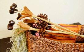アジアン バリ 雑貨 ♪バリ島のナチュラルシード造花♪ おしゃれ インテリア エスニック 造花 ナチュラル素材