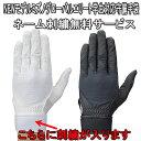 【送料無料 メール便発送】 Mizuno ミズノ 野球 守備用手袋 グローバルエリート 学生対応 手袋ネーム 刺繍サービス 左…