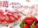 【送料無料】【期間限定】【タルトランキング1位獲得】洋菓子/タルト/ストロベリータルト苺のタルトとキャンディロー…