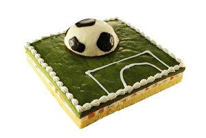 サッカーフィールドケーキ洋菓子 シフォンケーキ 抹茶 誕生日 記念 お祝い パーティー イベント サプライズ プレゼント
