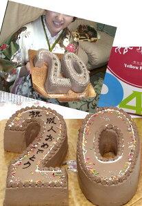 数字をカタチに!大切な記念日にナンバーケーキ【数字のケーキ】洋菓子 シフォンケーキ プレーン 誕生日 お祝い 記念 キャラクタースイーツ そっくりスイーツ プレゼント パーティー イベ