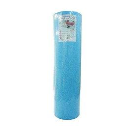 奥特殊紡績 マット ディスメル クリーンワン OK556 ブルー 30×45(T) cm