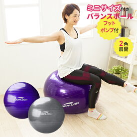 バランスボール 65cm 75cm ミニーボール付き フットポンプ付き 空気入れ セット アンチバースト 椅子 体幹トレーニング ダイエット器具 ダイエット バランス エクササイズ