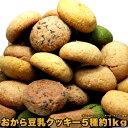 訳あり 豆乳 おからクッキー ソフトタイプ1kg ダイエットクッキー 【置き換え ダイエット】ギルトフリー