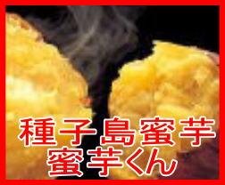 種子島蜜芋 蜜芋くん  15kg種子島産 安納芋 (紅)お歳暮 お年賀 ギフト【楽ギフ_のし】さつまいも 種子島蜜芋