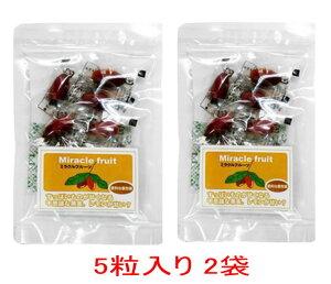ミラクルフルーツ 5粒入り×2袋 ゆうメール 送料無料