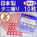 日本製 ダニシート Sサイズ(10×15cm) 10枚(ダニ捕りシート)ダニ取りシート/ダニ捕りマット