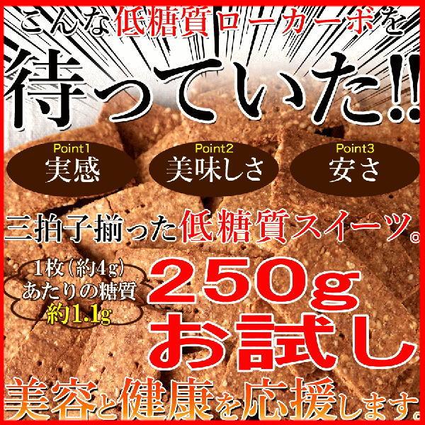 【訳あり】低糖質 ローカーボ 豆乳 おからクッキー250gお試し 高たんぱく質・高食物繊維の低糖質スイーツ!!ゆうメール 送料無料※後払い選択不可【おから クッキー 糖質制限】