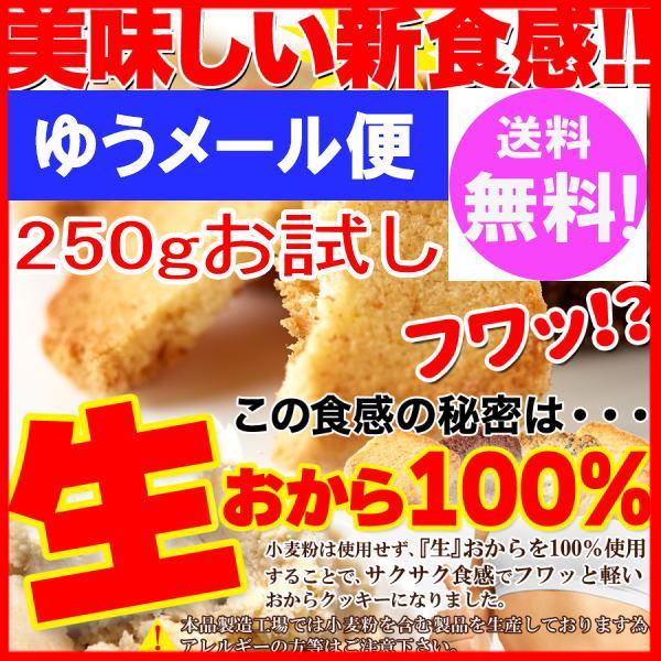生おから100% 豆乳 おからクッキー 3種 250gお試し(プレーン・ココア・セサミ) 【訳あり】1000円ポッキリ ゆうメール便 送料無料(後払い不可)【おから ダイエット クッキー】