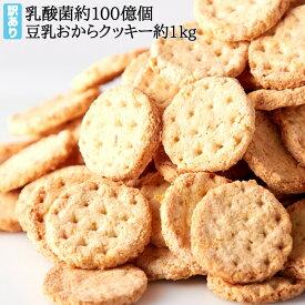 【訳あり】乳酸菌約100億個入り 豆乳 おからクッキー 1kg (250gx4袋) プレーン ハードタイプ【ギルトフリー】【ダイエットクッキー】【関東 送料無料】