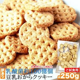 【訳あり】乳酸菌約100億個入り 豆乳 おからクッキー 250gお試し プレーン ハードタイプ【ギルトフリー】【ダイエットクッキー】【1000円ポッキリ 送料無料】
