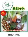【A/Bそれぞれ限定50セット】(8月分)季節の野菜セット8/10より発送開始します。【送料無料】※沖縄・離島・北海道を除く