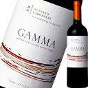 ベサ・ガンマ・オーガニック・カルメネール・レゼルバ | 赤ワイン お返し ギフト ワイン わいん お酒 男性 酒 記念日 結婚祝い 誕生日 プレゼント
