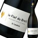 ドメーヌ・ランドロン・ミュスカデ・セーヴル・エ・メーヌ・シュール・リー・フィエフ・デュ・ブライユ 2013|白ワイン…