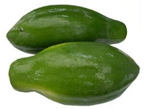 三大栄養素を分解する食物酵素が豊富! 美容と健康を促す南国野菜!沖縄産青パパイヤ約10kg(5〜10個)