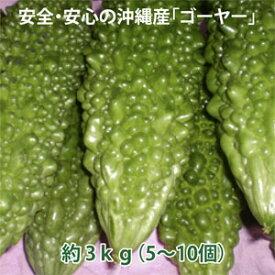 長寿食の代名詞ゴーヤー クセになる苦みと高い栄養価 美容に欠かせない栄養も豊富 安全・安心の沖縄産ゴーヤー 約3kg(5〜10個)(税・送料込)