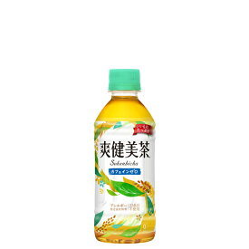 爽健美茶 [ペット] 300ml x 48本 [2ケース販売] 送料無料 【代引き不可・クール便不可・同梱不可】