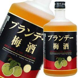 ブランデー梅酒 720ml [麻原酒造/埼玉県] 果実酒