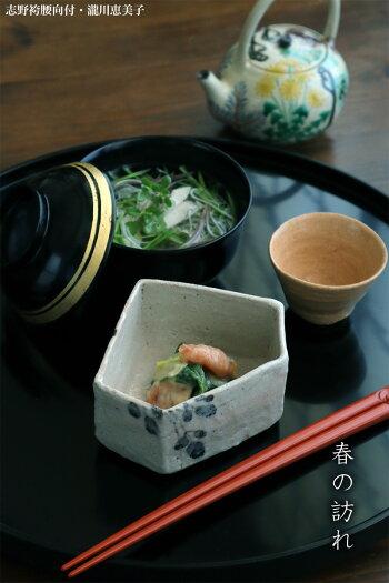 京焼:乾山写色絵春草紋銚子・伏原博之《酒器・250ml》