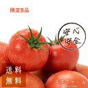 予約販売 10月中下旬より順次発送予定 約4kg B品商品 ご家庭用 簡易梱包 わけあり おためし 送料無料 約4kg トマト 安…