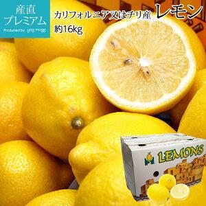 レモン 約16kg 95個・115個・140個・165個 カリフォルニア産又はチリ産 送料無料【レモン/れもん/檸檬/果物/フルーツ/ギフト/贈答/プレゼント】【産直プレミアム】