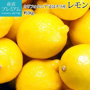 レモン 約3kg 30個 カリフォルニア産又はチリ産 送料無料【レモン/れもん/檸檬/果物/フルーツ/ギフト/贈答/プレゼント】【産直プレミアム】