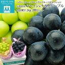 ぶどう シャインマスカット ナガノパープル 約1.2kg(約600g×各1房) 2房セット 渋谷ハヤシフルーツ プレミアムフル…