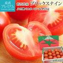 高糖度フルーツトマト ブリックスナイン 1kg AS〜AL 約10〜20個 JA全農ぐんま 群馬県産 送料無料 【フルーツトマト/高…