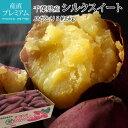 さつまいも シルクスイート 約5kg Sサイズ 30本前後 JAかとり 千葉県 送料無料 【サツマイモ/しるくすいーと/ポテト/…