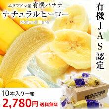 有機バナナ「ナチュラルヒーロー」JAS認定エクアドル産1箱10本入