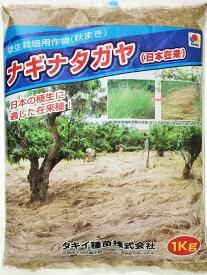 タキイ種苗 ナギナタガヤ種子(日本在来) 1kg 緑肥の種