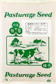 【送料無料】ホワイトクローバー種子 フィア 1kg
