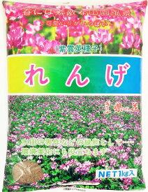 【2021年産】レンゲ種子 1kg 緑肥の種