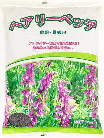 ヘアリーベッチ種子 1kg 緑肥の種