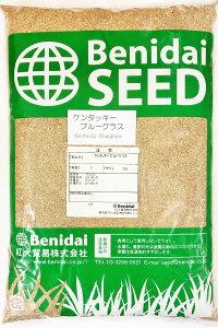 ケンタッキーブルーグラス種子 10kg(1kg×10袋)※写真は1kgです 芝の種